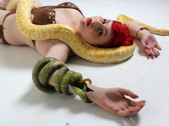 Snake arm